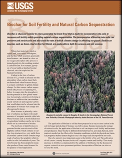 BIOCHAR FOR SOIL FERTILITY AND NATURAL