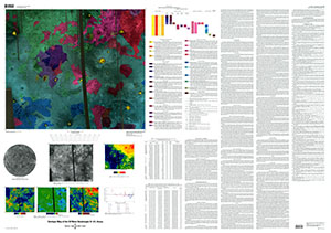 GEOLOGIC MAP SIF MONS QUAD (V-31), VENUS